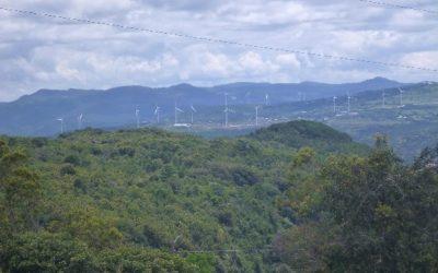 Construcción de caminos de acceso y bases de las torres, en parques eólicos – más protección medioambiental