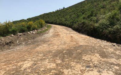 Estabilización de suelos en caminos rurales con productos multienzimáticos