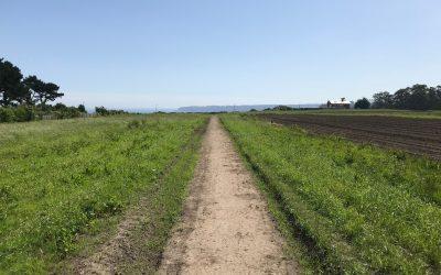 Trabajo previo a la estabilización del suelo